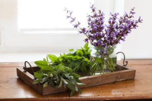 Herbs on wooden tray